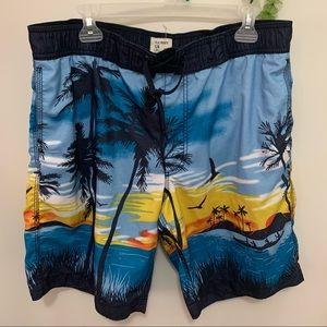 Old Navy Havana Beach Swim Shorts